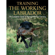 Training the Working Labrador