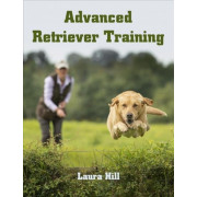 Advanced Retriever Training