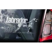 Labrador Retriever - v08