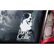 Border Collie - v04