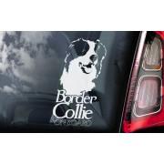 Border Collie - v04