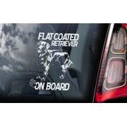 Flat Coated Retriever - v01