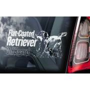 Flat Coated Retriever - v02
