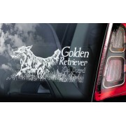 Golden Retriever - v02