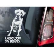 Labrador Retriever - v01