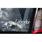 Labrador Retriever - v04