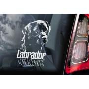 Labrador Retriever - v07