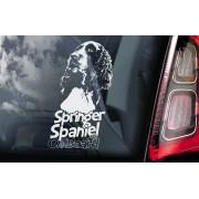 Springer Spaniel - v02